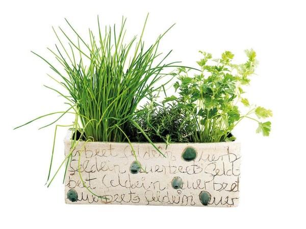 Pflanzenkasten