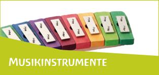 media/image/musikinstrumente51961405de211.png