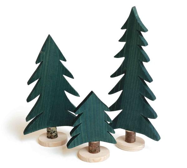 Tanne 13 cm Holzart Fichte grün